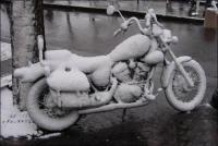 Kesäpelien talvisäilytys